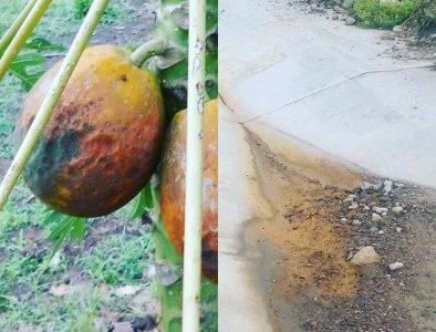 Preocupa a ejidatarios de Pueblo Nuevo el ácido que continúa en la supercarretera