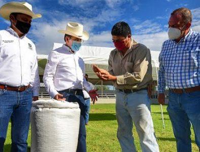 Aispuro entrega 90 toneladas de semilla de frijol en tres municipios más