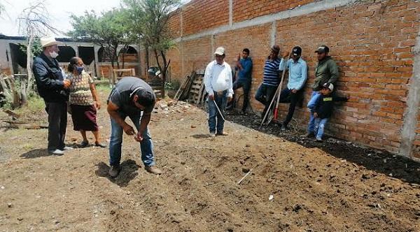 Municipio lleva huertos de traspatio a 50 comunidades