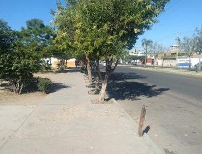 Sin instalarse, 14 tianguis en la ciudad